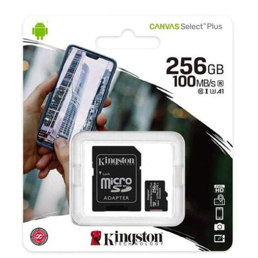 Class 10 256GB SDCS2 Micro Kingston